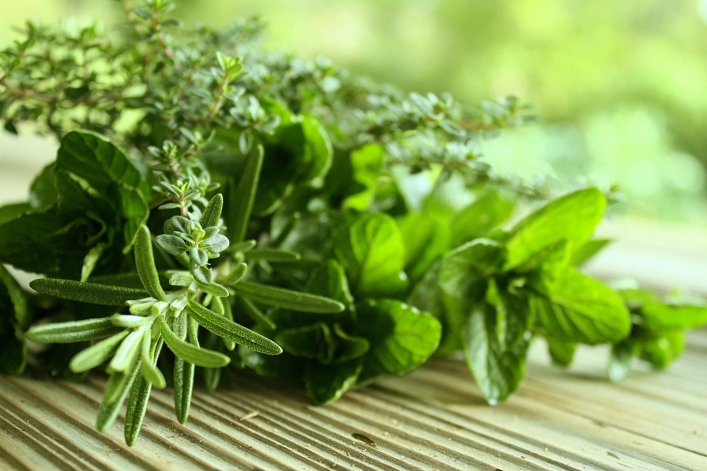 erbe-aromatiche-apre-1